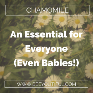 chamomile essential oil from Beeyoutifull.com