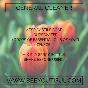 General Cleaner Recipe from Beeyoutiful.com