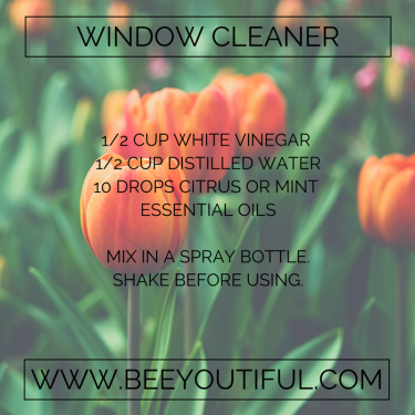 Window Cleaner Recipe from Beeyoutiful.com